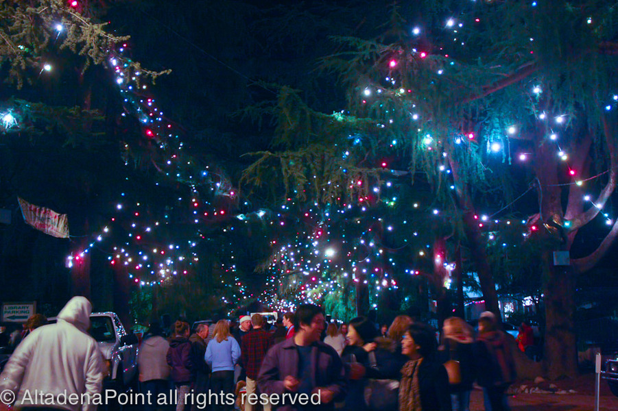 Altadena Point Archives Christmas Tree Lane Takes A Bough