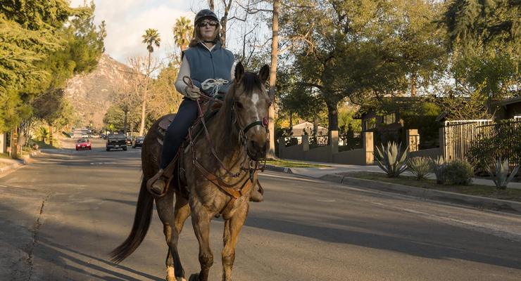 Altadena: A Horse Lover's Best Kept Secret
