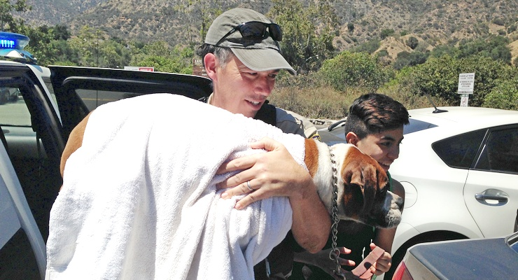 Emergency Crews Rescue Four-Legged Heat Stroke Victim in Eaton Canyon