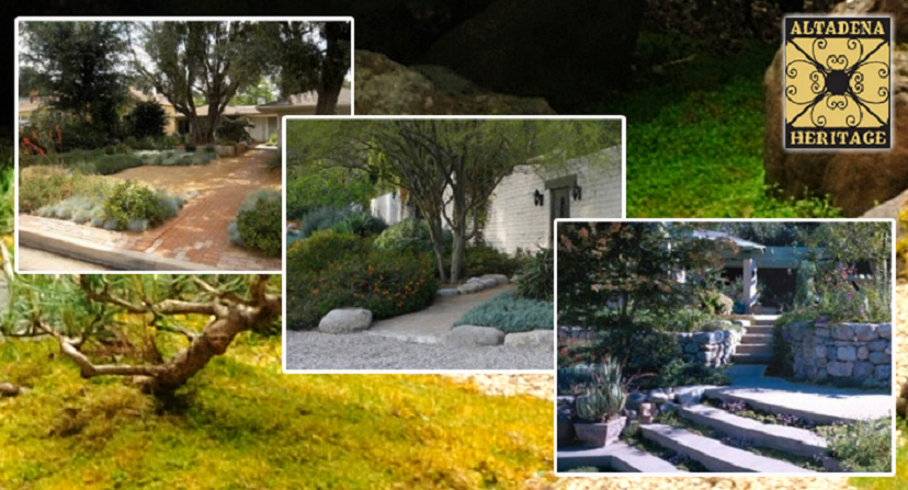 Altadena Heritage's Pours Out Water-Wise Landscaping Workshop Series