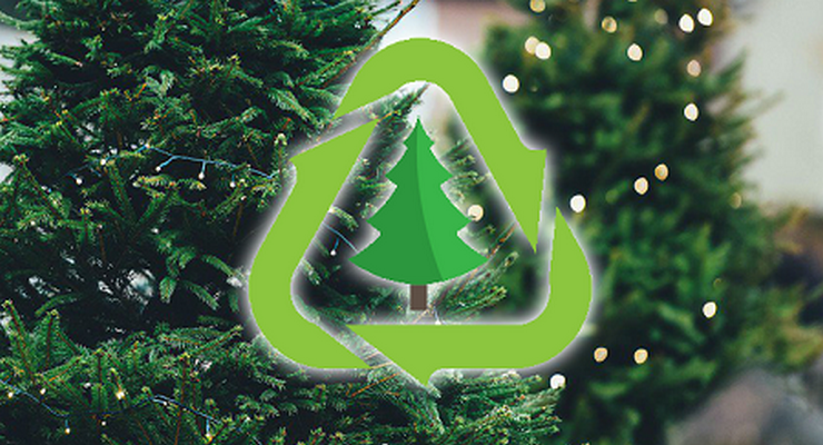 Los Angeles County Announces Holiday Tree Recycling Information